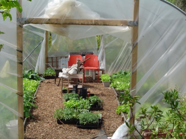 Polytunnel with chairs